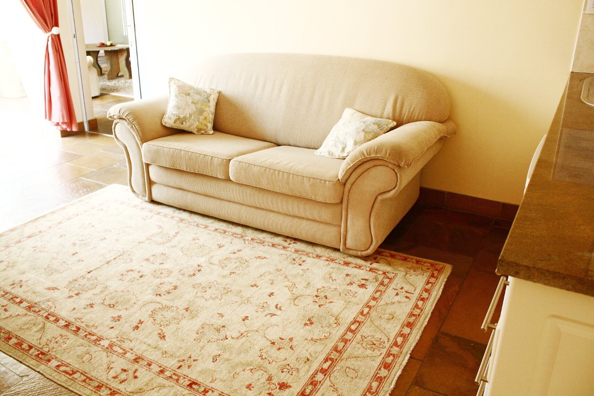 Living area with a sleeper couch and a persian carpet
