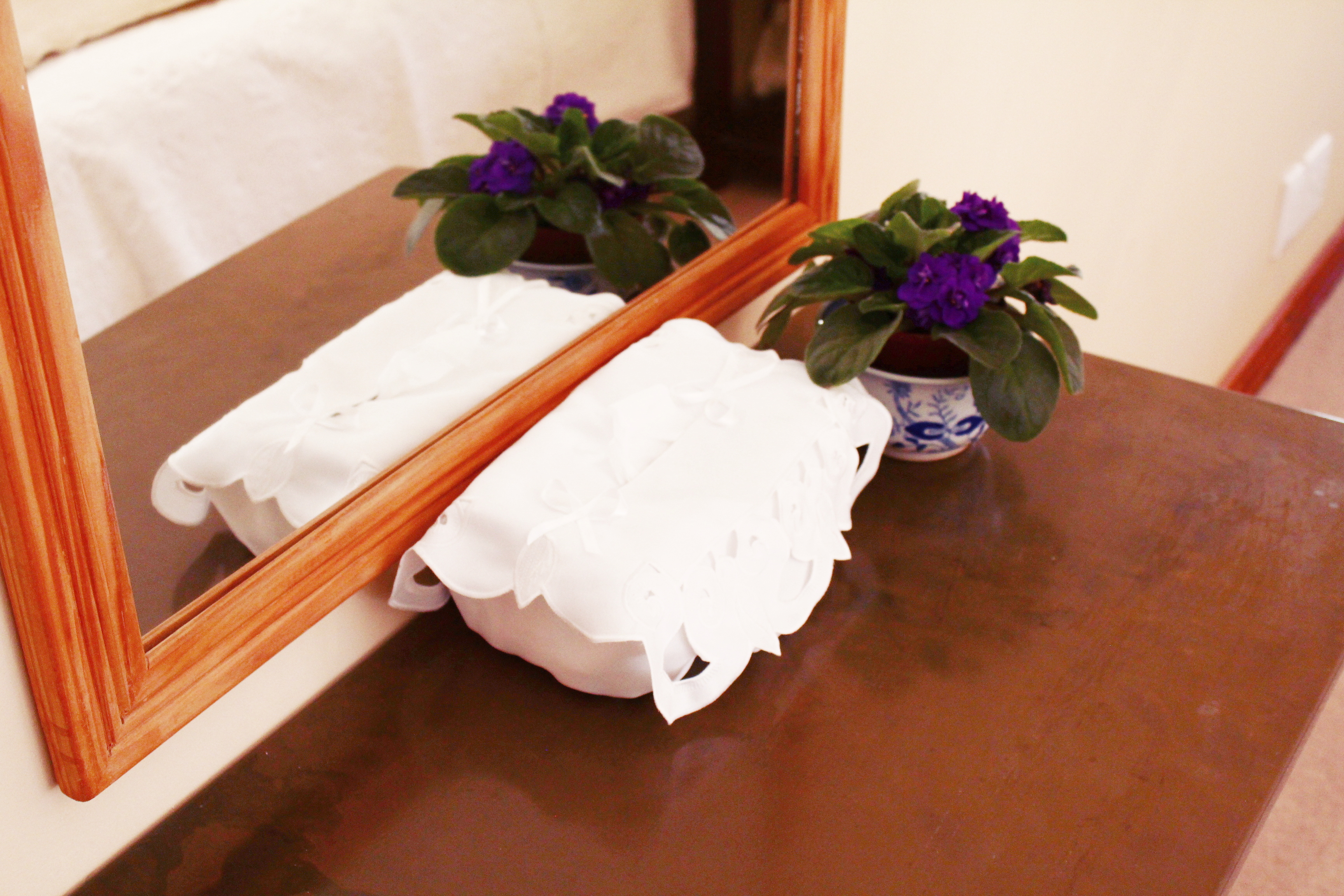 Mirror and a potplant on a slat table with tissues